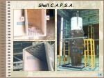 shell c a p s a113