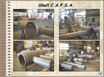 shell c a p s a119