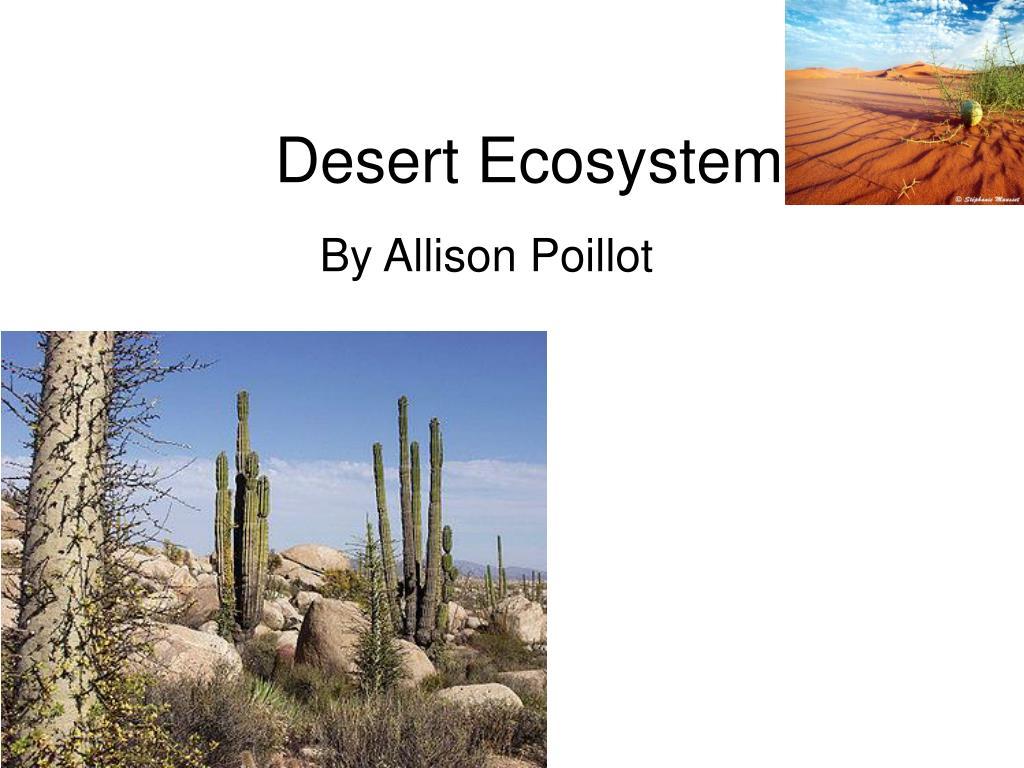 desert ecosystem l.