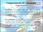 comportamento do consumidor enquadramento7