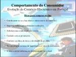 comportamento do consumidor evolu o do com rcio electr nico em portugal37