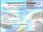 comportamento do consumidor set secure electronic transaction