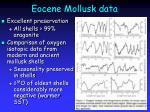 eocene mollusk data