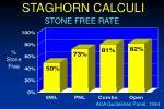 staghorn calculi38