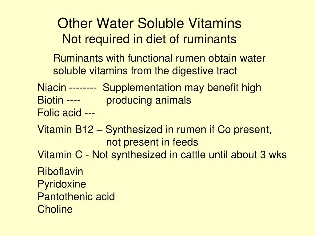 Other Water Soluble Vitamins