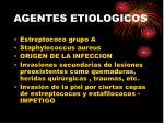 agentes etiologicos