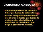 gangrena gaseosa23