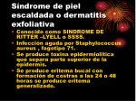 s ndrome de piel escaldada o dermatitis exfoliativa