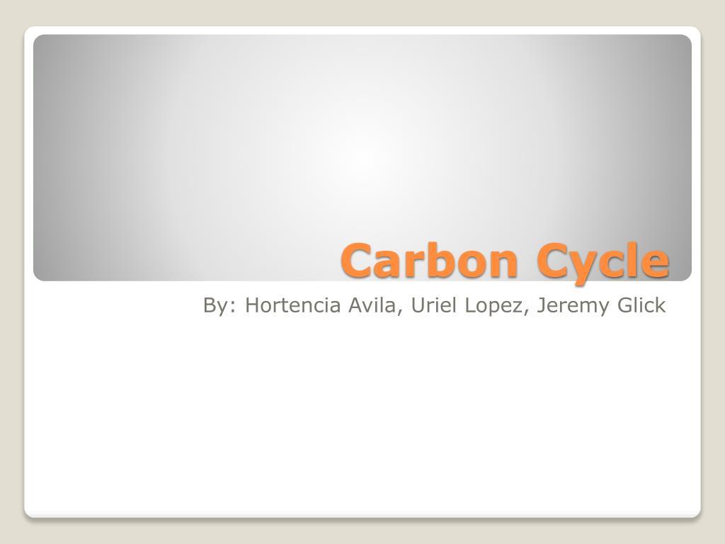 carbon cycle l.