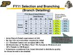 fy11 selection and branching branch detailing