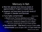 mercury in fish