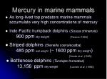 mercury in marine mammals