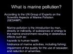 what is marine pollution