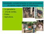 actividades complementarias al caf generadoras de ingreso seg n orden de importancia