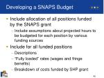 developing a snaps budget45
