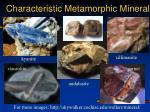 characteristic metamorphic minerals