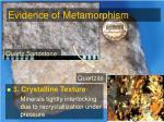 evidence of metamorphism7
