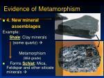 evidence of metamorphism8