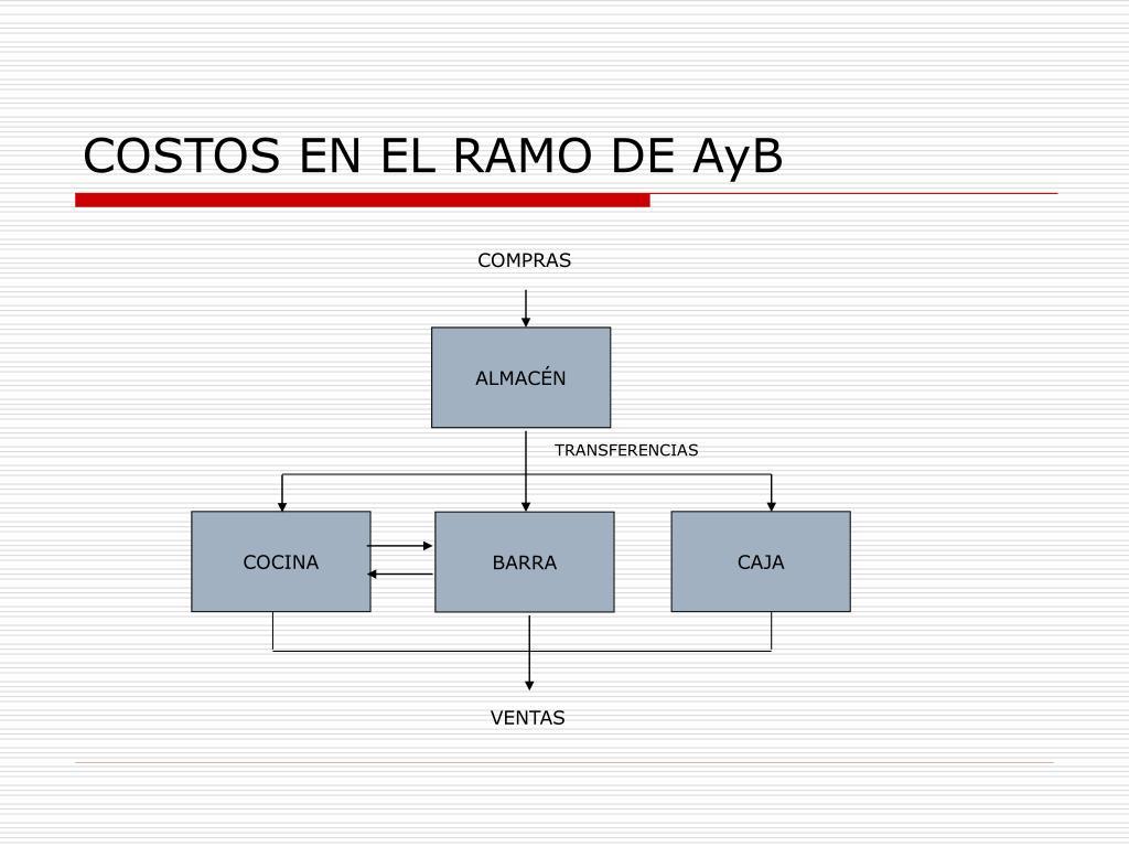 COSTOS EN EL RAMO DE AyB