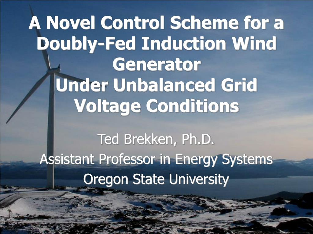 A Novel Control Scheme for a Doubly-Fed Induction Wind Generator