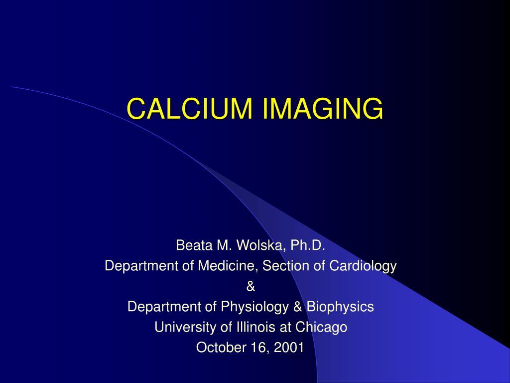 calcium imaging l.