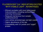 fluorescent ca 2 indicators excited with visible light advantages