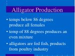 alligator production48
