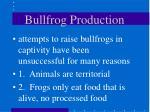 bullfrog production36
