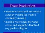trout production29