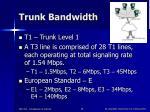 trunk bandwidth