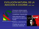 evoluci n natural de la adicci n a coca na jer 1984