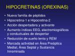 hipocretinas orexinas