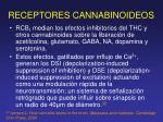 receptores cannabinoideos1