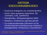 sistema endocannabinoideo1