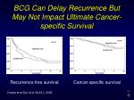 bcg can delay recurrence but may not impact ultimate cancer specific survival