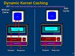 dynamic kernel caching