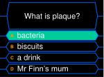 what is plaque1