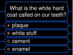 what is the white hard coat called on our teeth