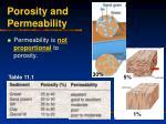 porosity and permeability25
