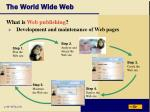 the world wide web47