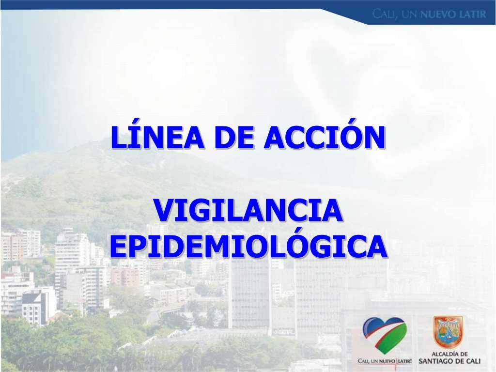 LÍNEA DE ACCIÓN