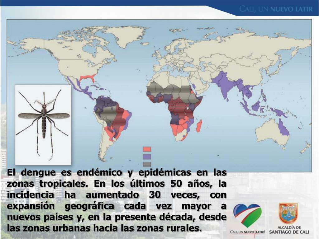 El dengue es endémico y epidémicas en las zonas tropicales.