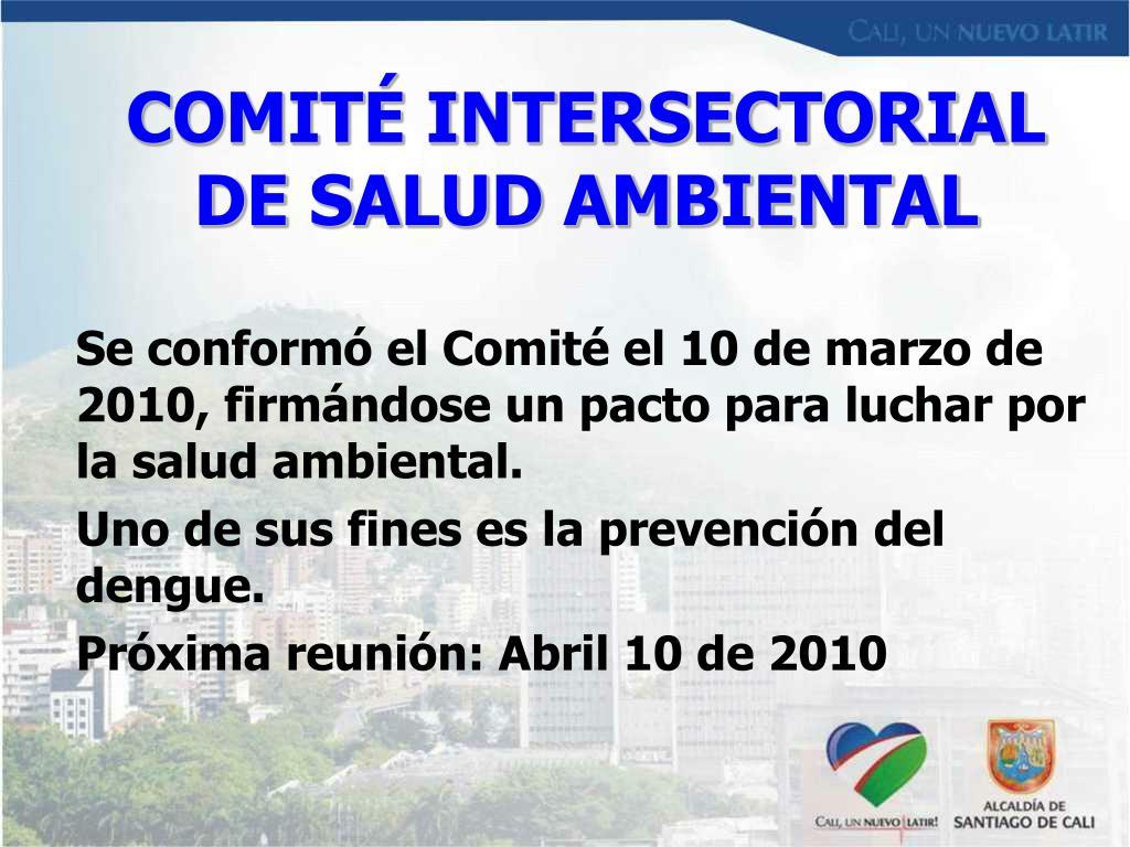 COMITÉ INTERSECTORIAL DE SALUD AMBIENTAL