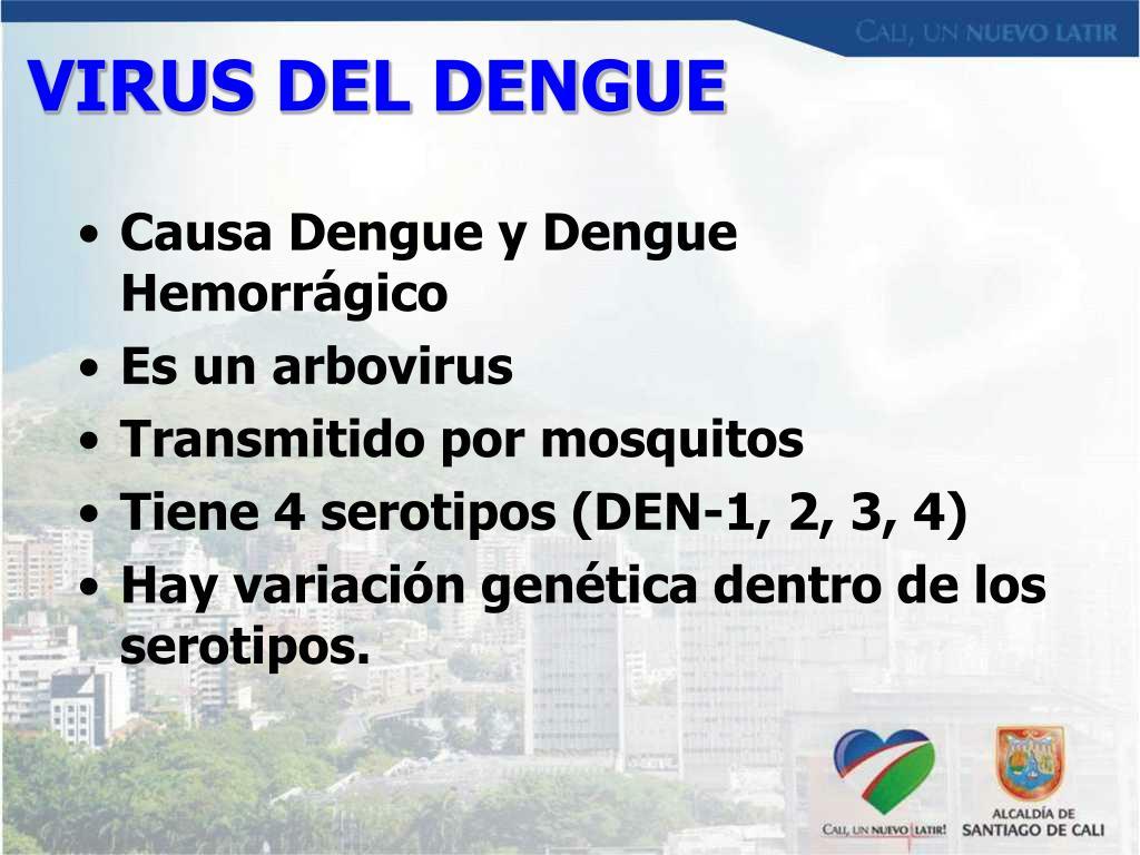 VIRUS DEL DENGUE