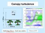 canopy turbulence