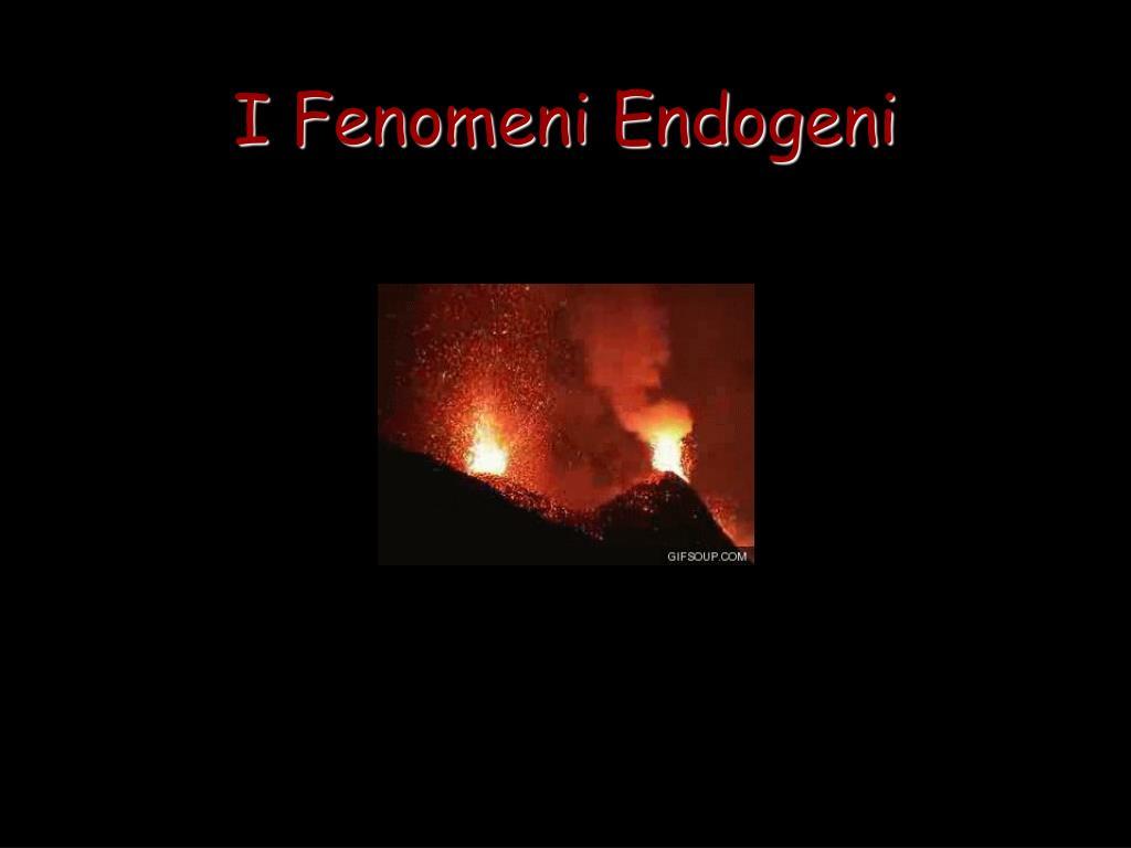 i fenomeni endogeni l.