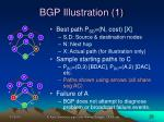 bgp illustration 1