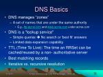 dns basics