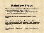 rainbow trout14