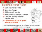 building a horse ration